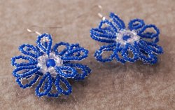 Earrings - 15678